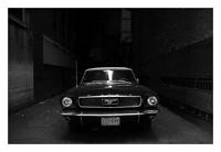 Picture of an old Mustang found is some alley in Chicago.